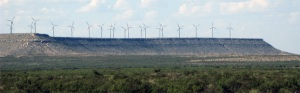 One of many massive wind farms along the way.