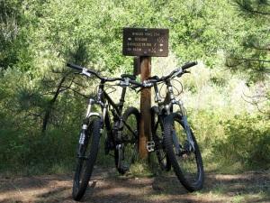 Our happy bikes.