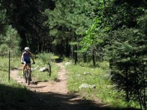Caro biking