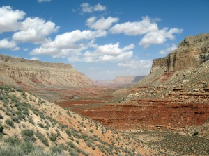 Havasu canyon.